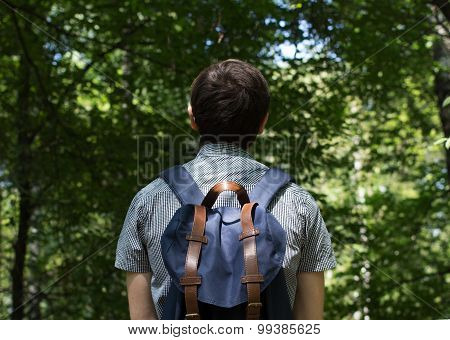 traveler in the forest