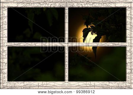 Moonlight Window Frame