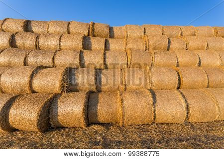 Piled Hay Bales On A Field Against Blue Sky