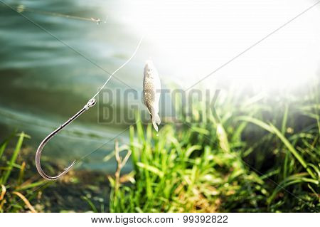 Fishing Hook On Lake And Fish Background