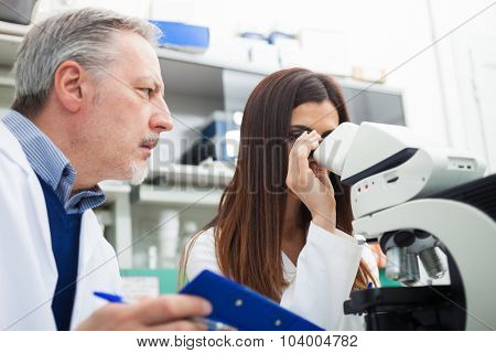 Two scientists discussing a medical document in their laboratory