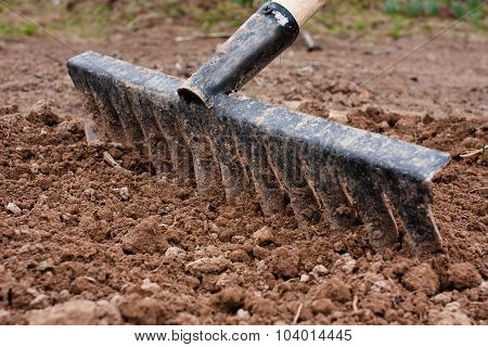 Alignment Of Soil In The Vegetable Garden With Rake