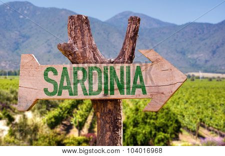 Sardinia wooden sign with field background