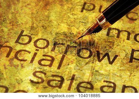 Fountain Pen On Borrow Text