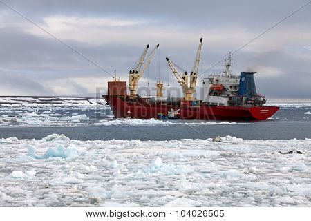 ARCTIC OCEAN, RUSSIA - July 24, 2015:  Cargo ship â??Polar Kingâ?? delivering supplies. Summer in Arctic is very short and  all goods have to be delivered to remote polar settlements within this period