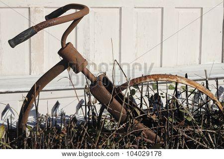 vintage rusty bike