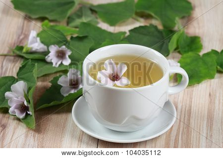 Herbal Tea From Marshmallow