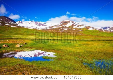 Summer Iceland. The hills are covered with snow and are reflected in a small lake. Around a lot of fresh green grass