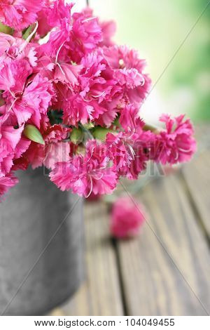 Beautiful bouquet of pink carnation in watering can on bright background