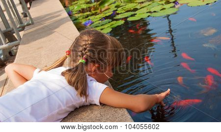 Playing with a fish