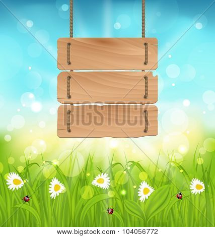 Spring morning, meadow and camomiles with wooden sign, natural l
