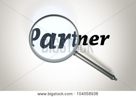 An image of a magnifying glass and the word partner