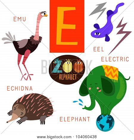Cute Zoo Alphabet In Vector.e Letter. Funny Cartoon Animals: Emu,electric Eel,echidna,elephant . Alp