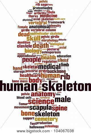 Human Skeleton Word Cloud