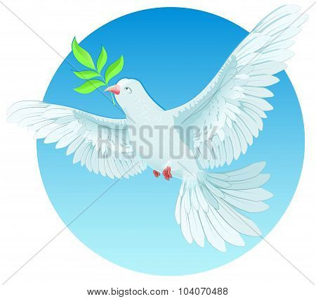 White dove holding green twig. International Peace Day concept