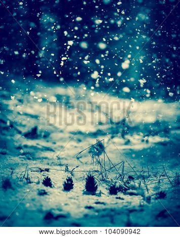 Falling Snow. Blue toning.