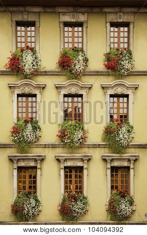 Nine beautiful windows with flowers in Europe