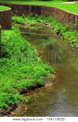Little stream with greenery and rocks around it