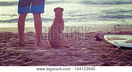Dog And Surfer Standing On The Sand
