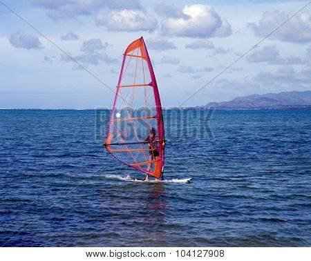 Windsurfer, Tobago.