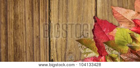 Autumn leaves pattern against close-up of wooden plank