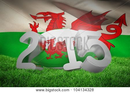 Wales rugby 2015 message against wales flag