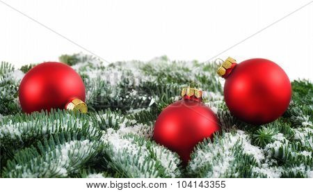 Red Christmas Baubles And Snow On Fir Branches