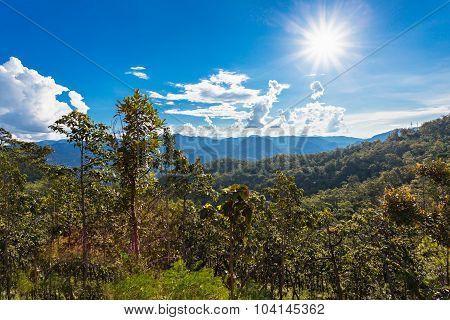 Thamplaphasuea National Park
