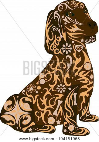 The spaniel breed of a dog, a dog sits and looks, an animal with a pattern, the domestic pet a dachs