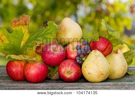 fruits on wooden table outdoor in the garden