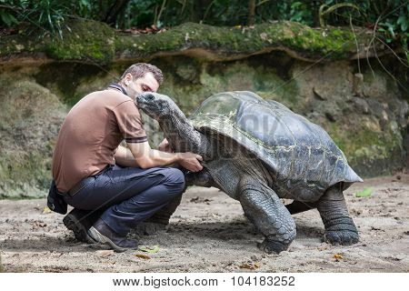 Men And Turtle