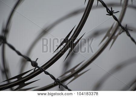 razor_wire