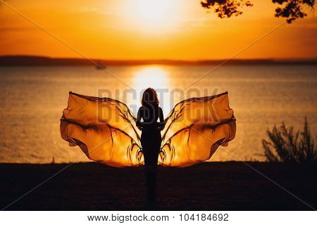 Sexy Woman Silhouette over Red Sunset Sky, Sensual Female on Beach, Vacation Holiday Concept, Girl w