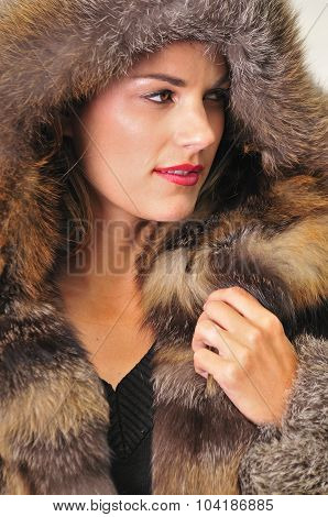 Pretty Woman Wearing A Brown Fur Coat