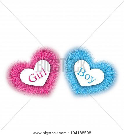 Pink and blue baby shower, reveal the gender baby shower