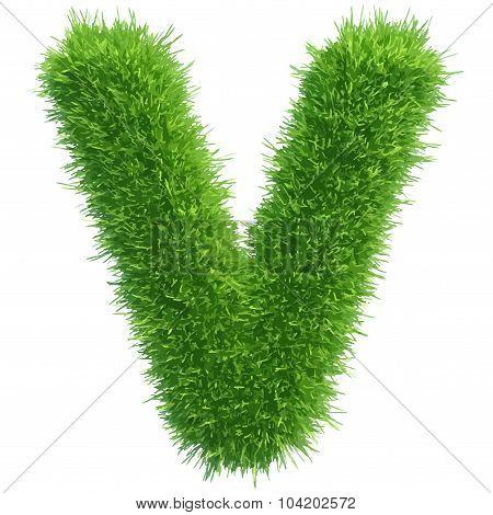 Vector small grass letter v on white background
