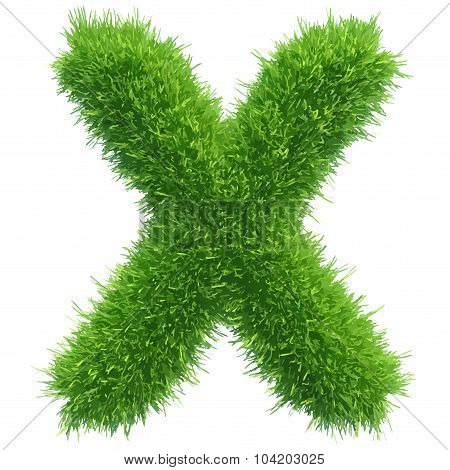 Vector small grass letter x on white background