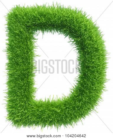Vector capital letter D from grass on white background