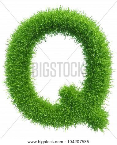 Vector capital letter Q from grass on white background
