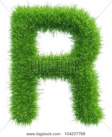 Vector capital letter R from grass on white background