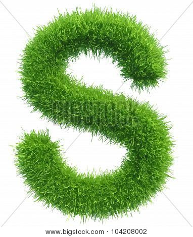 Vector capital letter S from grass on white background