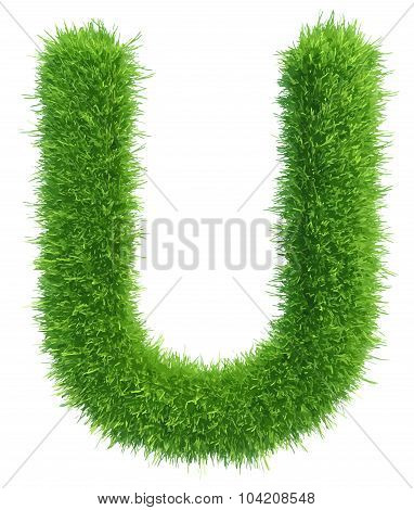 Vector capital letter U from grass on white background