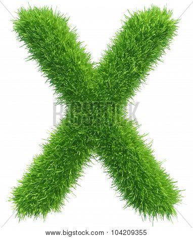 Vector capital letter X from grass on white background