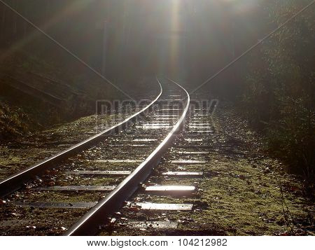 Track into darkness