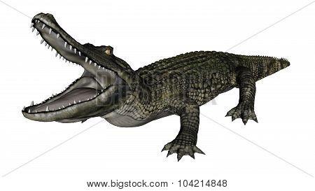 Caiman roaring - 3D render