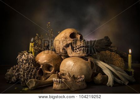 Still Life With Skull And Death.