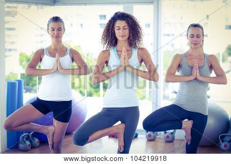 Women doing tree pose in fitness studio