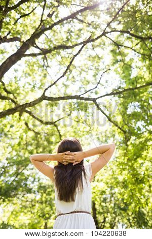 Low angle rear view of woman relaxing against trees while standing in park
