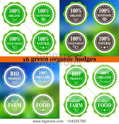 Set Of Organic Eco Badges