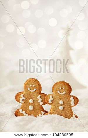 homemade christmas gingerbread cookies on the snow